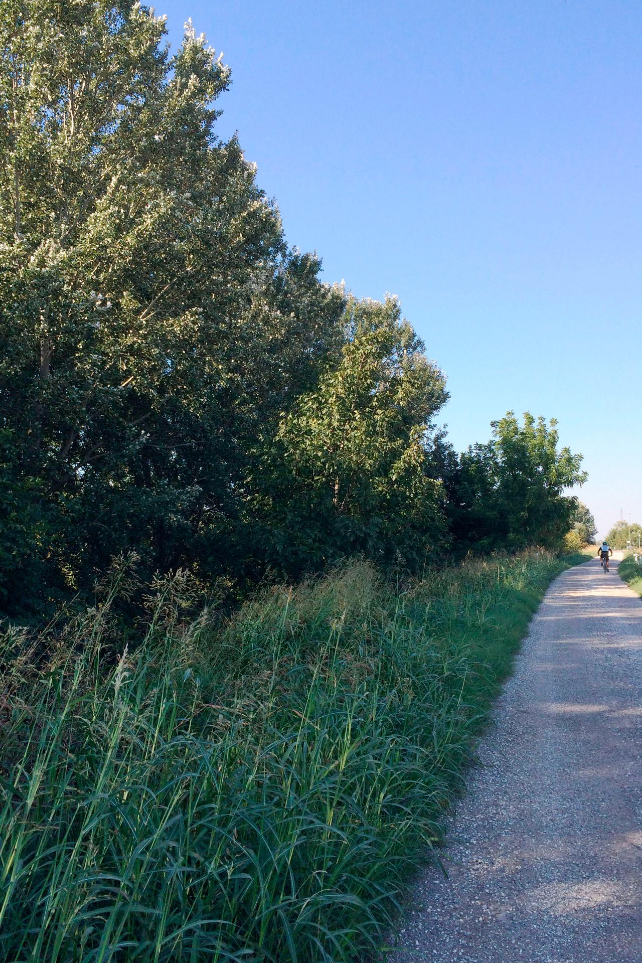 Anguillara Veneta_Itinerario del Boschetto di Borgoforte